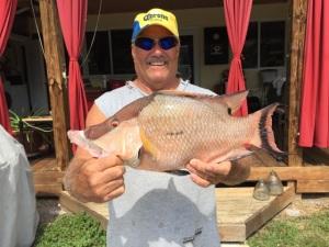 Keylargo Fish Charter